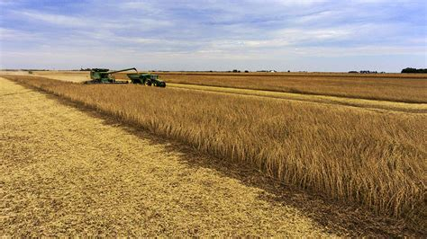 Ag land values decline for third consecutive year ...