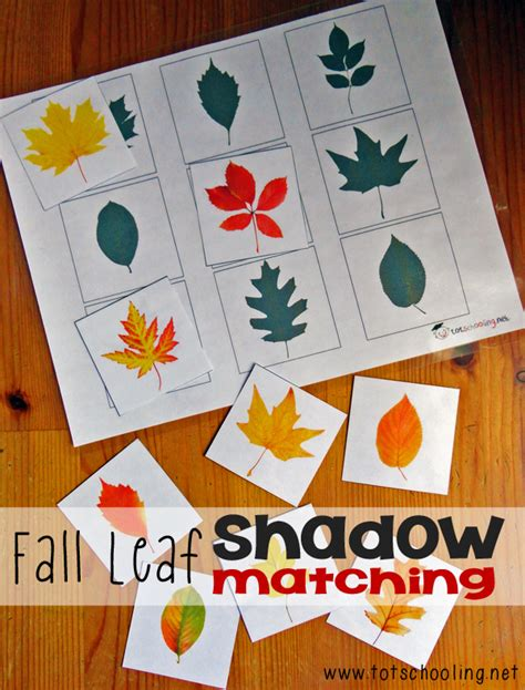 fall leaf shadow matching totschooling toddler 148   cover