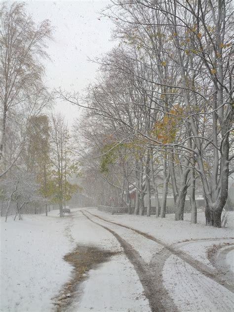Pirmais sniegs! - PhotoBlogSite
