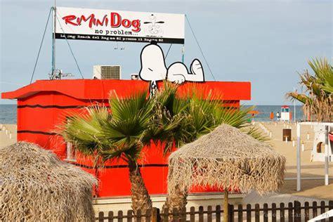 Bagno 82 Di Rimini, La Nuova Spiaggia Pet Friendly A Rimini