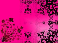 Hot pink wallpaper  li...