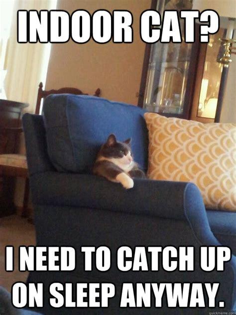 College Sleep Meme - indoor cat i need to catch up on sleep anyway lazy college cat quickmeme