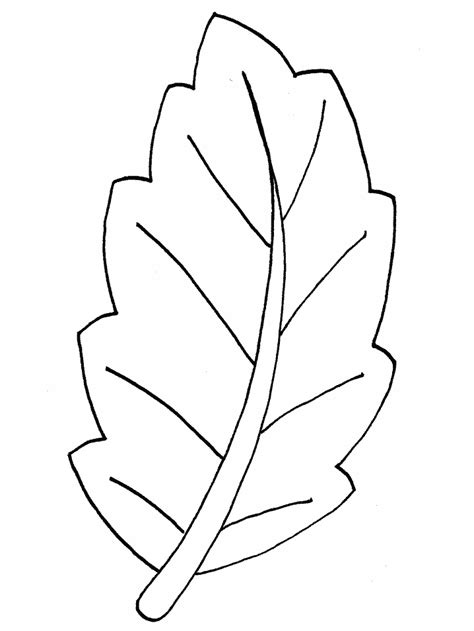 leaf coloring clipart clipground