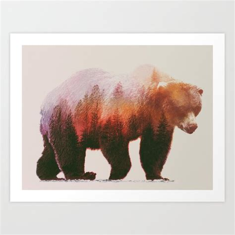 brown bear art print  andreas lie society