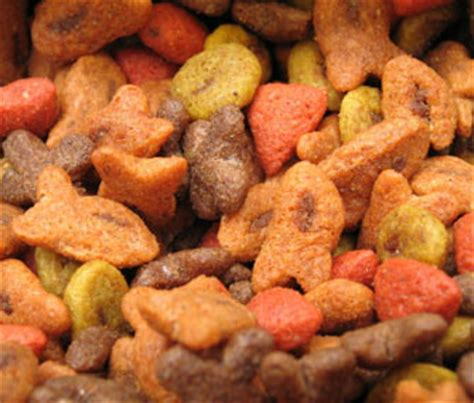 dogs eat cat food
