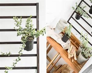 Kokoserde Für Welche Pflanzen : welche balkonpflanzen m gen sonnig lieben den schatten pflanzen auf dem balkon pflanze steht f r ~ Orissabook.com Haus und Dekorationen