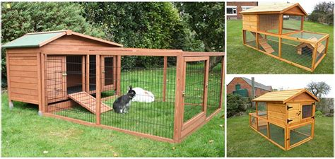 rabbit hutches for sale best chicken coop and rabbit hutches for sale