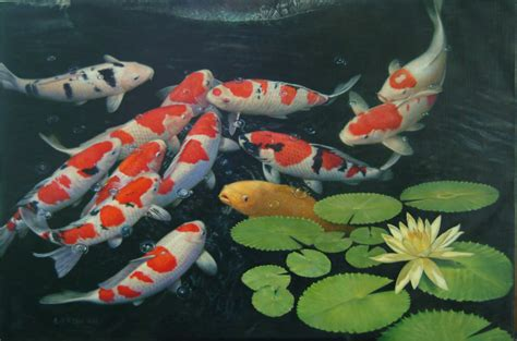 How To Maintain Your Koi Pond  Sa Home Owner