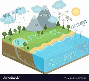 Water Cycle Diagram Royalty Free Vector Image