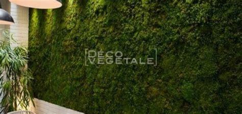 mur vegetal interieur pas cher cr 233 er mur vegetal exterieur sofag