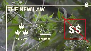 Vermont Become First State to Legalize Recreational ...