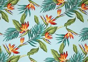 53 best Tropical wallpaper images on Pinterest   Tropical ...