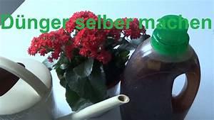 Dünger Selber Machen : d nger selber machen d nger f r pflanzen selbst machen pflanzend nger selber machen youtube ~ Watch28wear.com Haus und Dekorationen