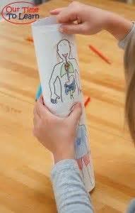human body activities preschool kindergarten