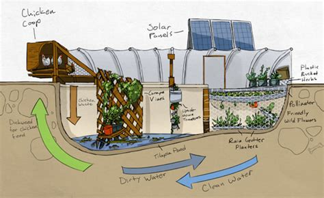Self Sufficient Backyard - how about this self sufficient garden pool farm vision