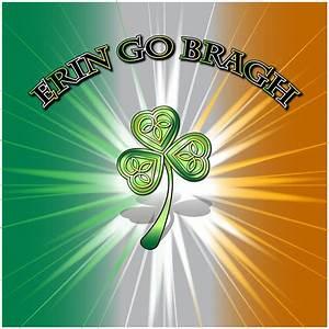 Erin Go Bragh Flag Digital Art by Ireland Calling