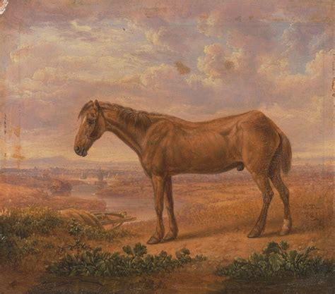 billy horse oldest horses google project long ever file commons towne draught aged charles wikimedia facts source years