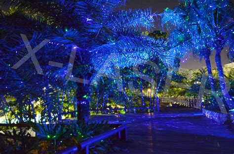 laser tree lights lights projector outdoor outdoor laser lights