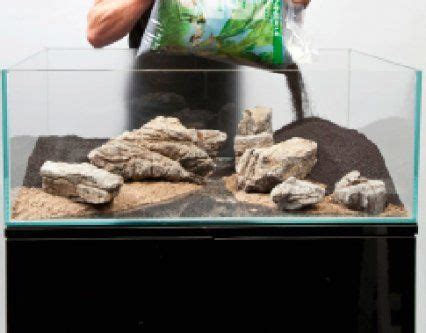 Aquascape Substrate by A Thoroughly Modern Aquascape Features Practical