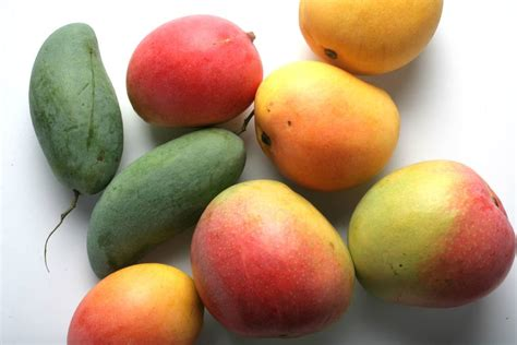 Future Mango Varieties Require Careful Treading