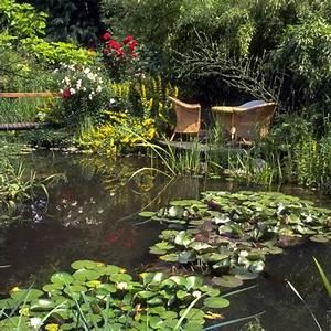gartenteich anlegen bepflanzen und pflegen praktische With französischer balkon mit teich im garten