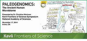 ORAL MICROBIOME – Warinner Group