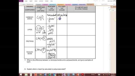 answers biochemistry worksheet