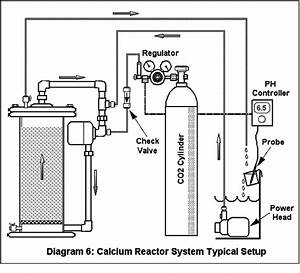 Calcium Reactors In  Out And Everything In Between