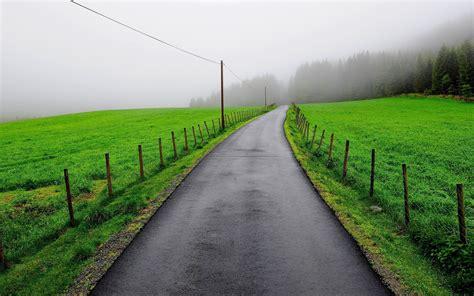 green grass road wallpapers