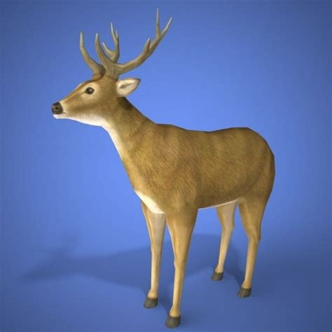 deer  model  model  printable obj mtl cgtradercom