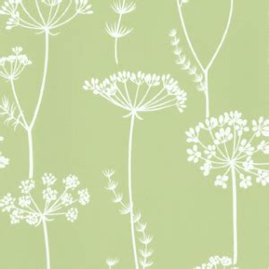 wallpaper  white queen annes lace floral pattern
