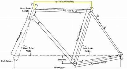 Geometry Bicycle Bike Frame Tube Head Fork
