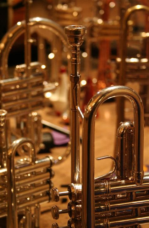 brass instrument wikipedia