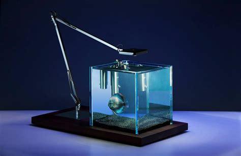 Okeanos Aquascaping Custom Aquariums And Ponds