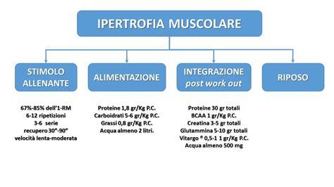 allenamento alimentazione  massa muscolare