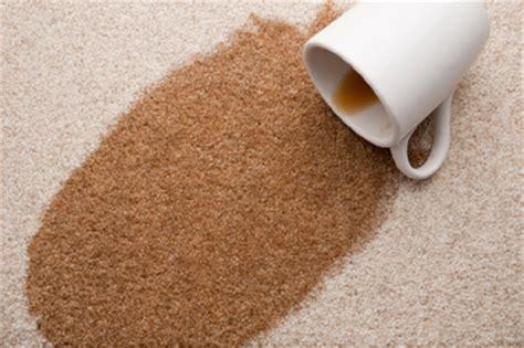 recurring spots blog  pelletier rug