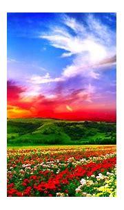 Download Free Beautiful Full HD Wallpapers   PixelsTalk.Net