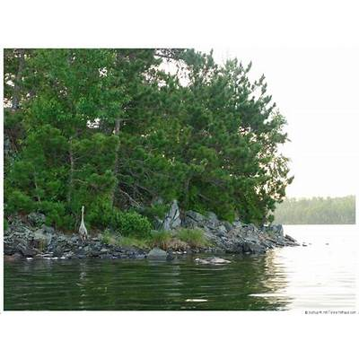 Category: BWCA - Boundary Waters Canoe Area Wilderness
