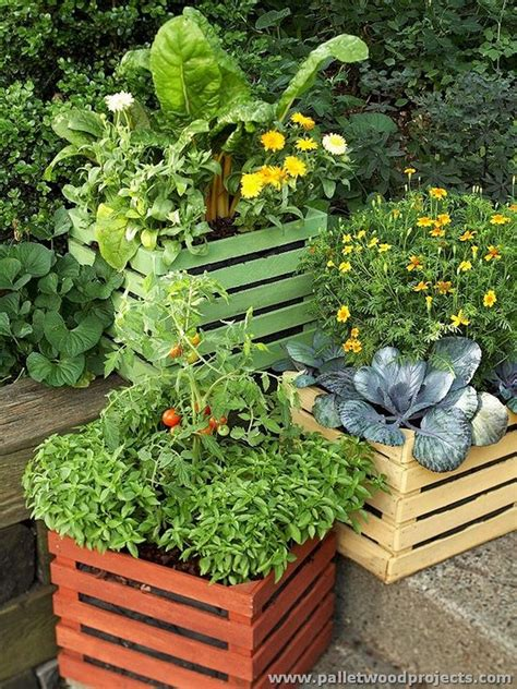 vegetable container gardening upcycled wood pallet ideas pallet wood projects