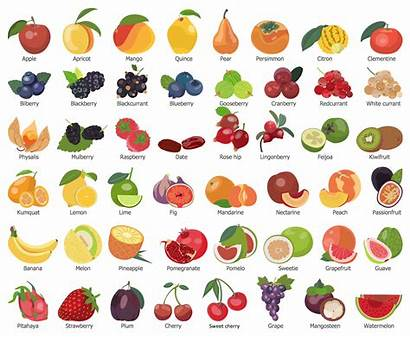 Healthy Health Clipart Foods Fruits Drawing Elements