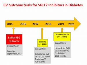 SGLT2 inhibition and cardiovascular outcomes: lessons from ...