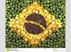 Brazil Flag Stock Image Image 8987811
