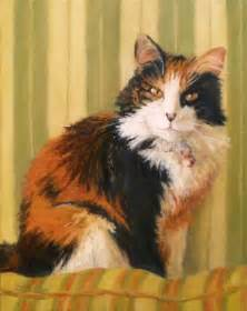 cat painting daily painting projects calico softness painting cat