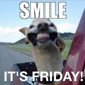 12 best images about Memes on Pinterest | Mondays ...