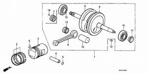 Crankshaft  Piston For 1979 Honda Z50