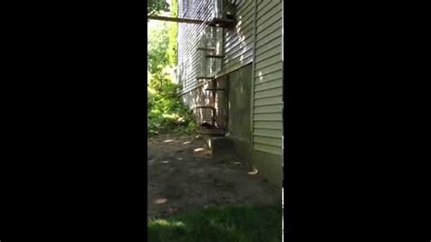 cage pour chat exterieur cage ext 233 rieur pour chat et chatterie