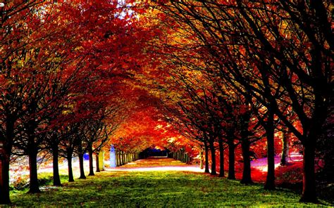 Beautiful Autumn Wallpapers by 30 Most Beautiful Autumn Wallpapers Hd Mixhd Wallpapers
