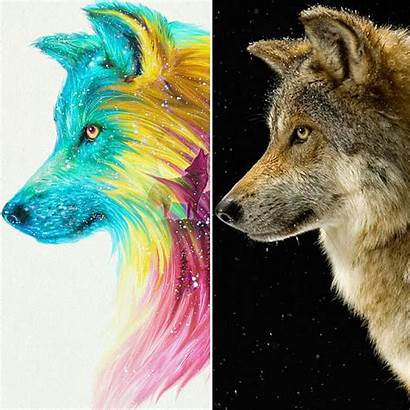 Wolf Fantasy Ronald Artwork Restituyo Colorful Hope