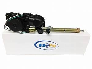 88891017   Power   Antenna   Auto Pro Usa   Oe   Chevy