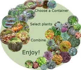 Types of Succulent Plant Container
